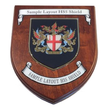 Presentation shield with shield shaped centrepiece and two scrolls.